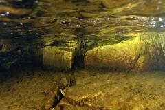 Marine habitat_Martin_Kielland 23