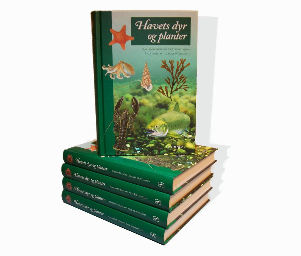 Havets dyr og planter - Gyldendal 2014