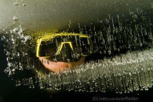 Dykker i is