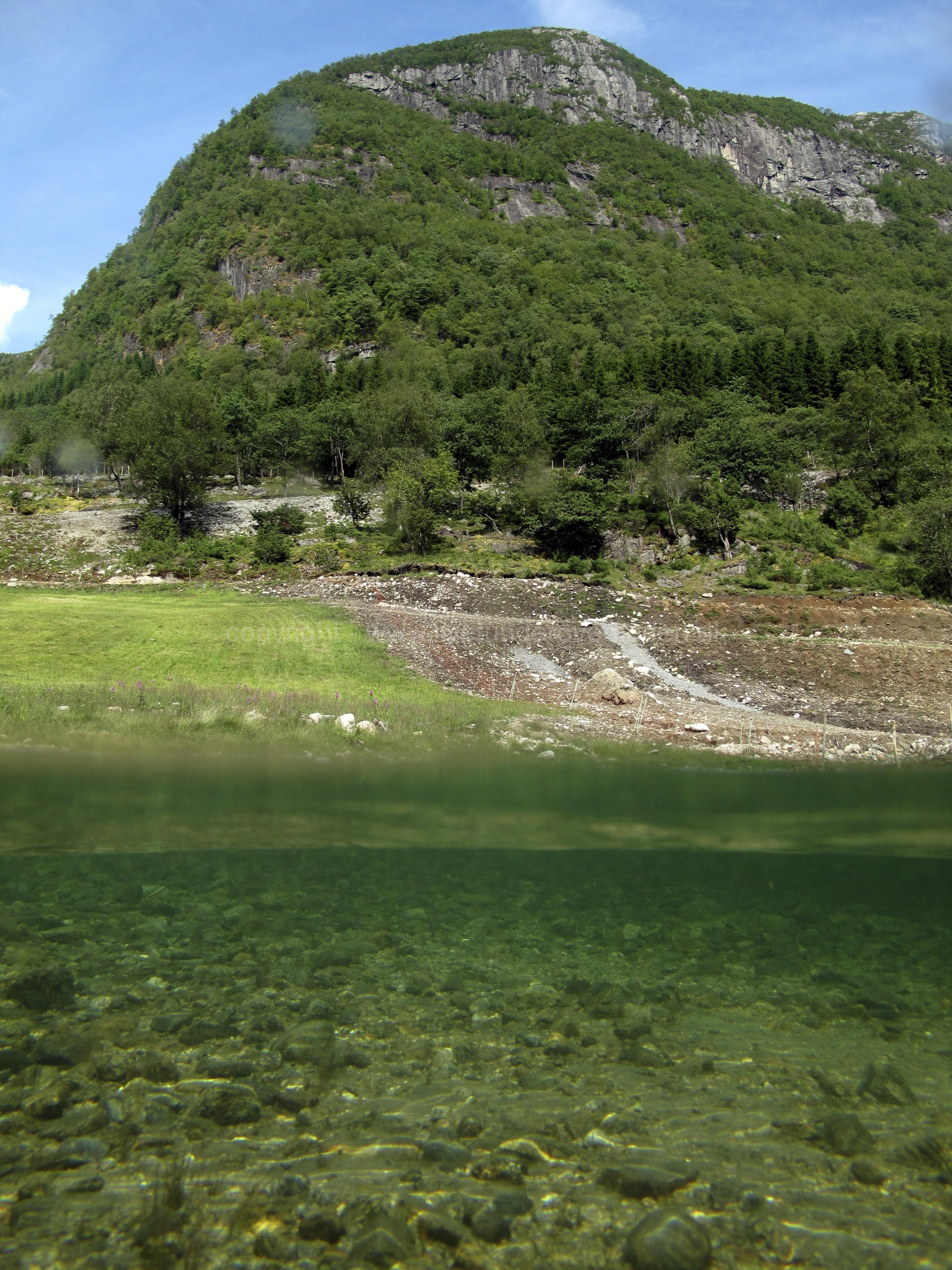 Freshwater habitat_Martin_Kielland 9