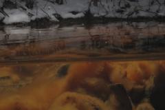 Freshwater habitat_Martin_Kielland 47