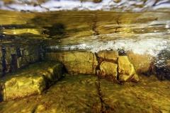 Marine habitat_Martin_Kielland 20
