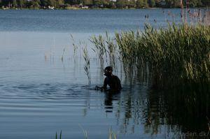I søen